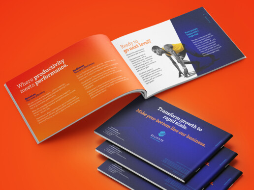 Ellivate Consulting - Re-branding project - Leaflet