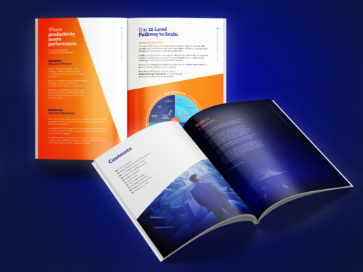Ellivate Consulting - Re-branding project - ebook